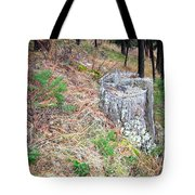 Old Pine Stump Tote Bag