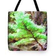 Old Pine Tree 1 Tote Bag