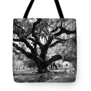 Old Plantation Tree Tote Bag
