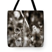 Old Poppies Tote Bag