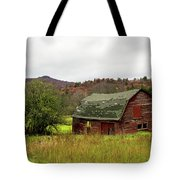 Old Red Adirondack Barn Tote Bag by Nancy De Flon