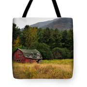 Old Red Barn In The Adirondacks Tote Bag by Nancy De Flon