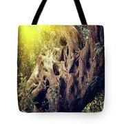 Old Sacred Olive Tree  Tote Bag