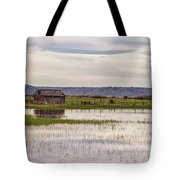 Old Shed On Marsh Tote Bag