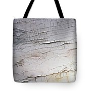 Old Siding Tote Bag
