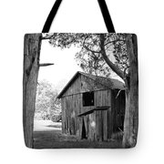 Old Structures Tote Bag