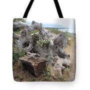 Old Stump At Gold Beach Oregon 5 Tote Bag