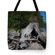 Old Stump Tote Bag