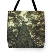 Old Sugar Maple Tree Tote Bag