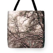 Old Tree 2 Tote Bag