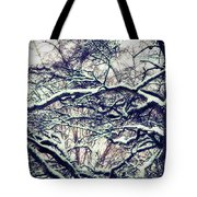 Old Tree 3 Tote Bag