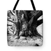 Old Tree Ground Up Tote Bag