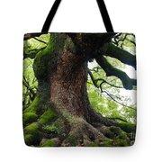Old Tree In Kyoto Tote Bag
