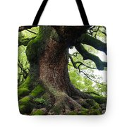 Old Tree In Kyoto Tote Bag