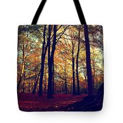 Old Tree Silhouette In Fall Woods Tote Bag