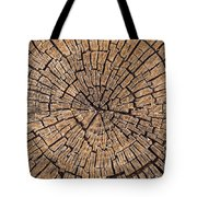 Old Tree Stump Tote Bag