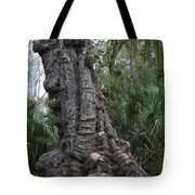 Old Trunk In The Swamp Tote Bag