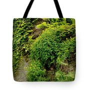 Old Walls Rising From The Water Edge. Tote Bag