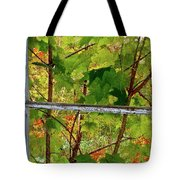 Old Window Tote Bag