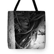 Old Wisteria 2 Tote Bag