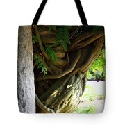 Old Wisteria Tote Bag