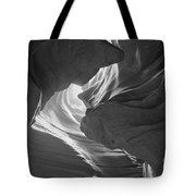 Old Woman In The Canyon Black And White Tote Bag