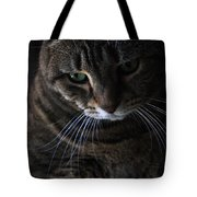 Ole Green Eyes Tote Bag