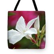 Oleander Casablanca 2 Tote Bag