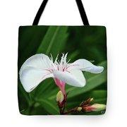 Oleander Harriet Newding  1 Tote Bag