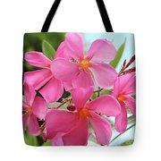 Oleander Maresciallo Graziani 1 Tote Bag