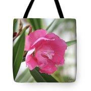 Oleander Splendens Giganteum 3 Tote Bag