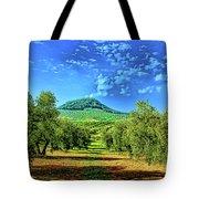 Olive Grove Spain Tote Bag