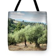 Olive Trees Hill Tote Bag