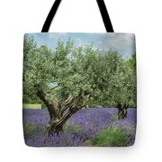 Olive Trees Of Provence Tote Bag