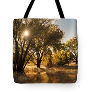 Oliver Sunbursts Tote Bag