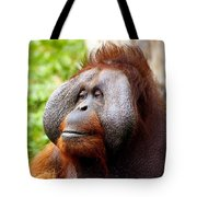 Ollie The Orangutang Tote Bag