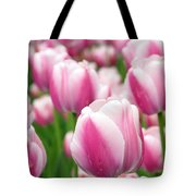 Ollioules Tote Bag