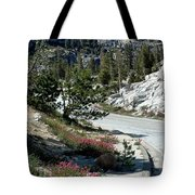 Olmsted Down The Road View Tote Bag
