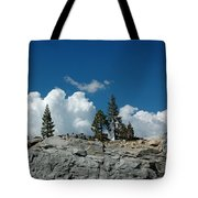 Olmsted Point Pine Rear View Tote Bag