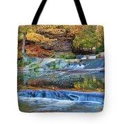 Olmsted Waterfalls Tote Bag