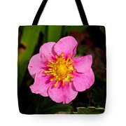 Olympia Pink Tote Bag