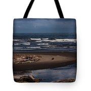 Olympic Peninsula Beach Tote Bag
