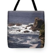 Olympic Peninsula Coastline Tote Bag