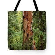Olympic Rainforest #1 Tote Bag