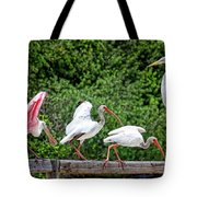 Olympic Team Tryouts Tote Bag