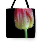 Ombre Sunrise Tote Bag by Tracy Hall