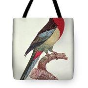 Omnicolored Parakeet Tote Bag
