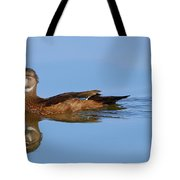 On A Clear Day You Can See.....your Reflection Tote Bag