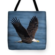 On A Mission Tote Bag by Cindy Lark Hartman