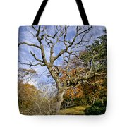 On A Verge Of The Dance. Tote Bag